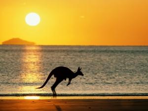 lavoro-in-australia