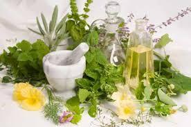 coltivare piante medicinali