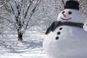 stagione invernale