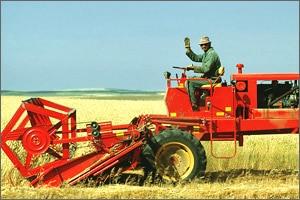come diventare coltivatore diretto imprenditore agricolo