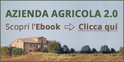 banner-ebook-azienda-agricola